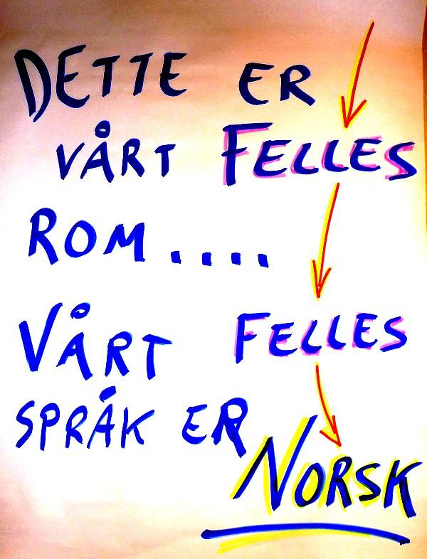 Flerspråklighet vg1